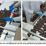 BCIT Research Supports Process Improvement at Purdy's Chocolatier