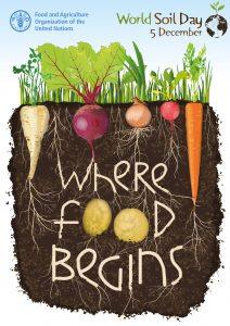World Soil Day Where Food Begins poster.