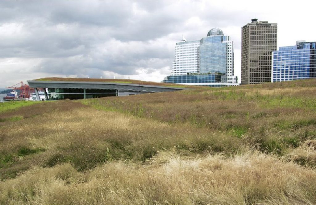 Vancouver Convention Centre Green Roof.