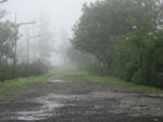 Lonely, deserted country road in the mist
