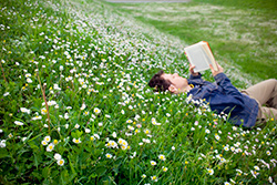 Man reading a book in a field of daisies.