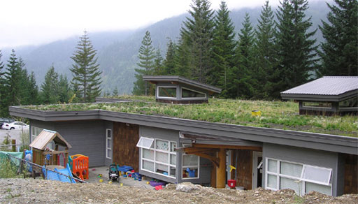 What Are The Different Types Of Green Roofs