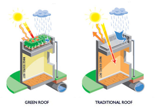 Why Green Roofs Benefits