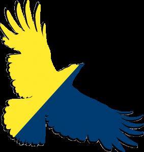 schoo of health sciences crow logo