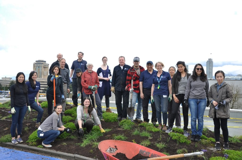 Volunteers atop the berm–an experiential project which looks at how a dynamic shape can alter the sensory experience of wind, sound and sight on an otherwise flat roof. Photo taken on roof of BCIT Centre for Ecologys elevated lab.