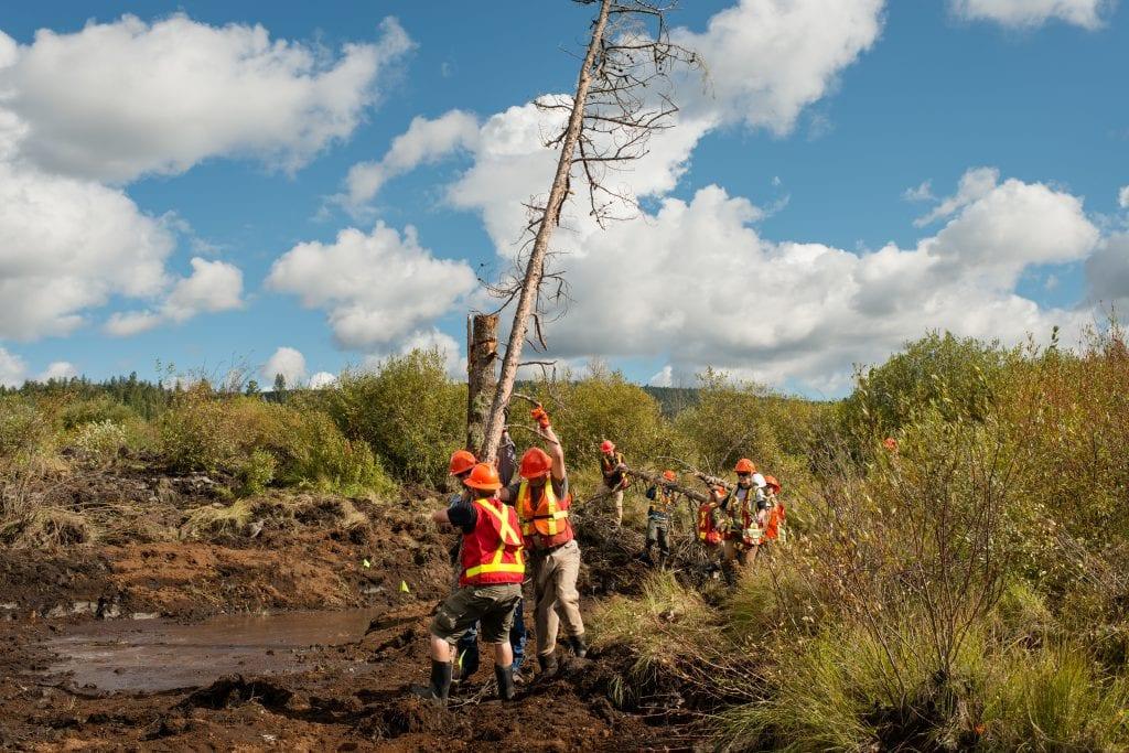BCIT-Ecological Restoration