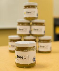 BeeCIT honey jars