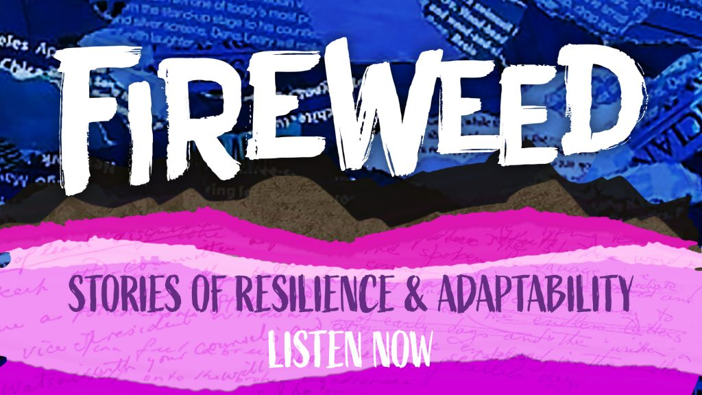 Fireweed podcast - listen now